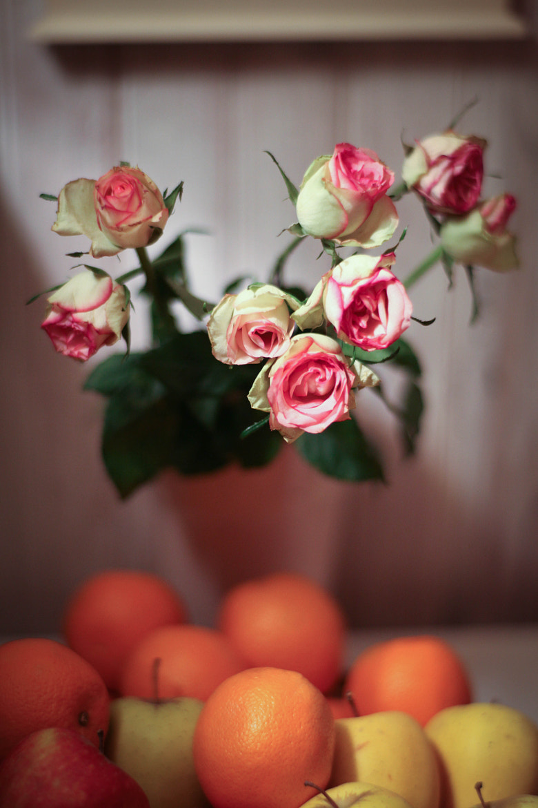Photograph Fruits and flowers by pierre leone on 500px