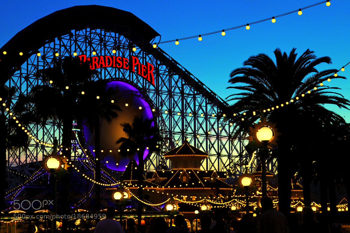 Photograph Paradise Pier by Rocky Wr on 500px