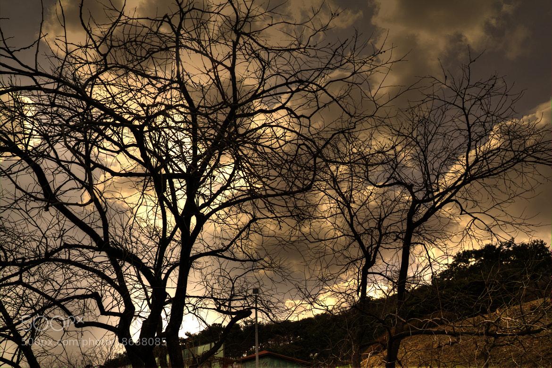 Photograph Untitled by Girish Arabale on 500px