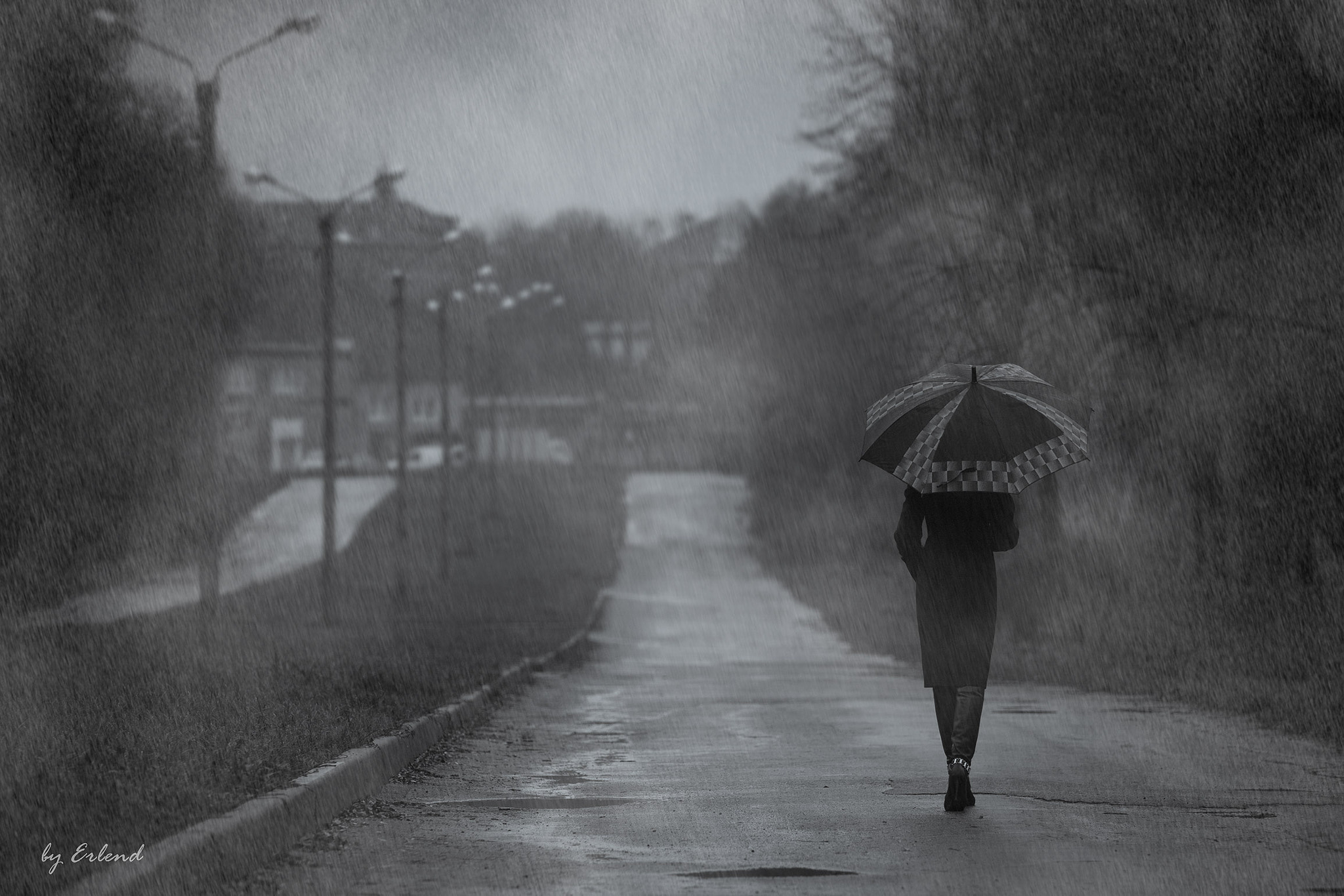 Photograph The rain by Erlend  on 500px