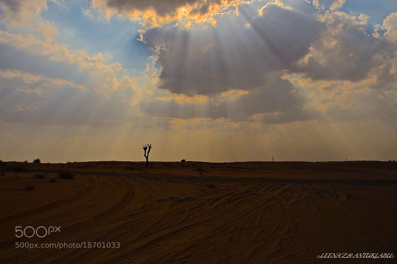 Photograph Ray of Light... by Leena'z Anilzam on 500px