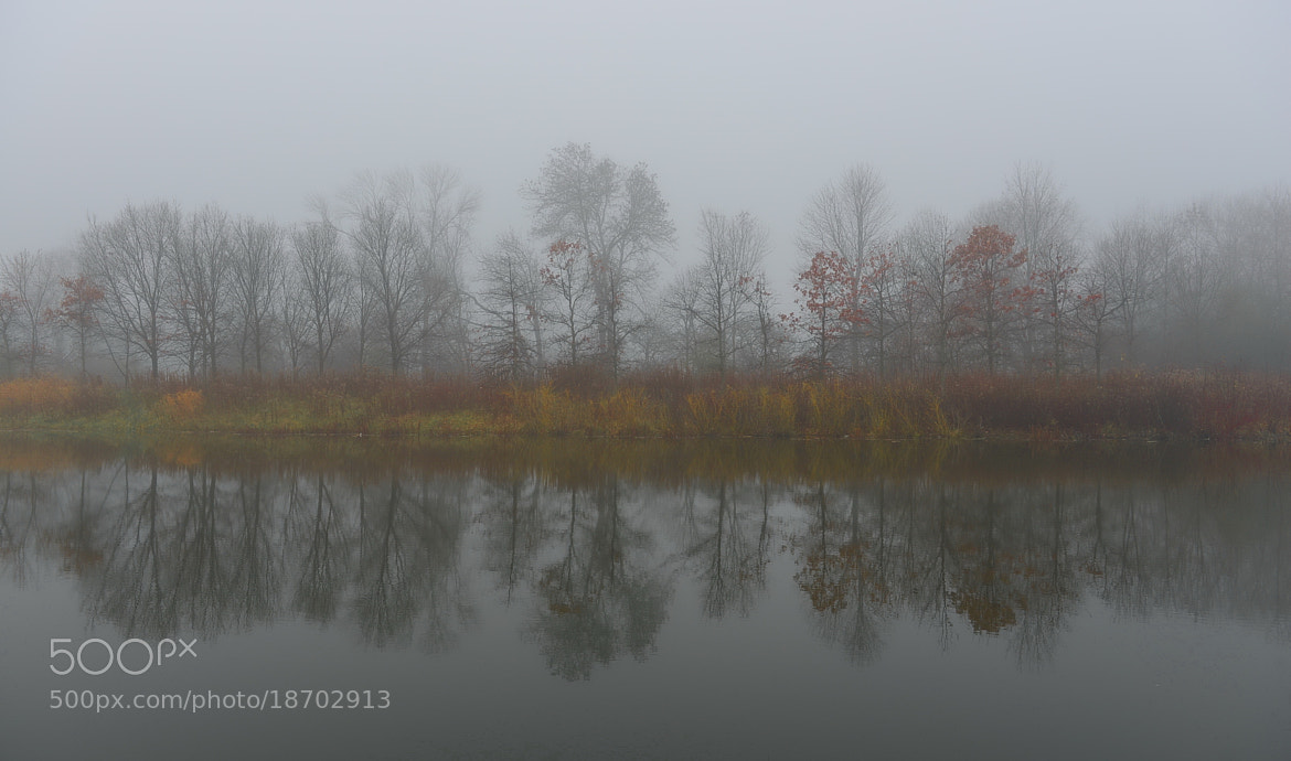 Photograph Pond Of Fantasy by AZ Imaging on 500px