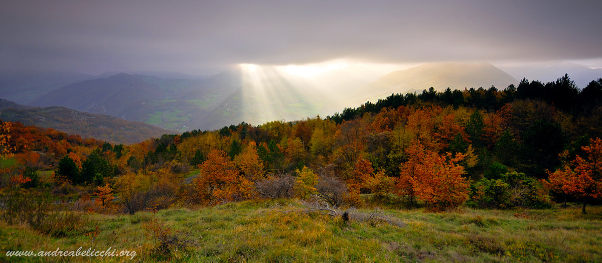 Photograph Ray of light by andrea belicchi on 500px