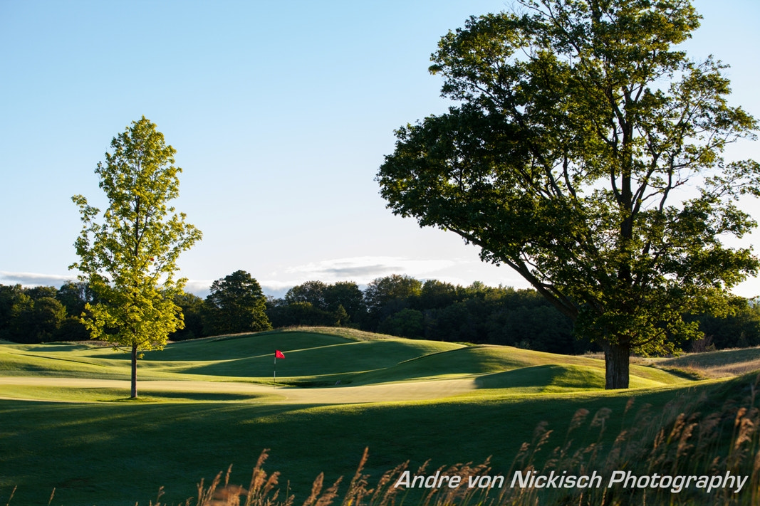 Photograph Golf anyone? by Andre von Nickisch on 500px