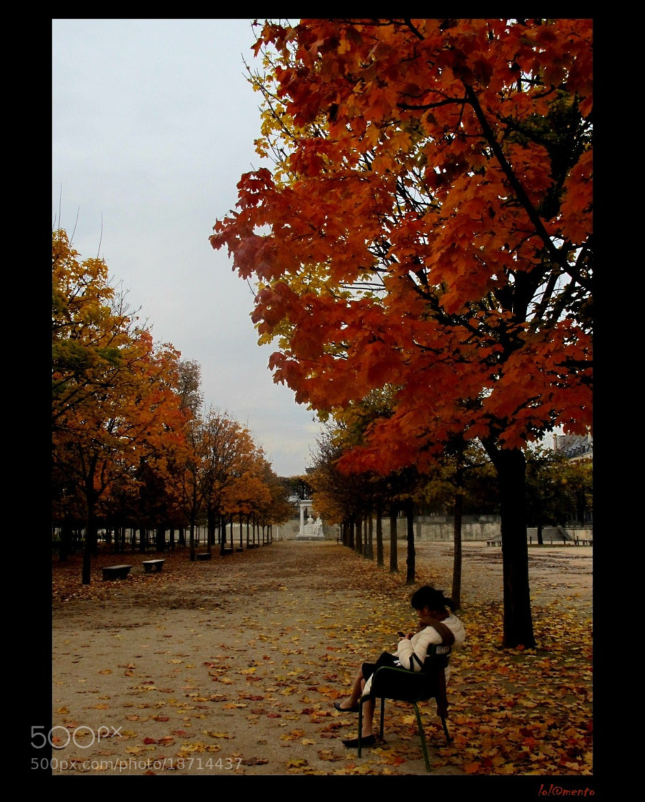 Photograph Akiko in Paris by Lola Mento Mucho on 500px