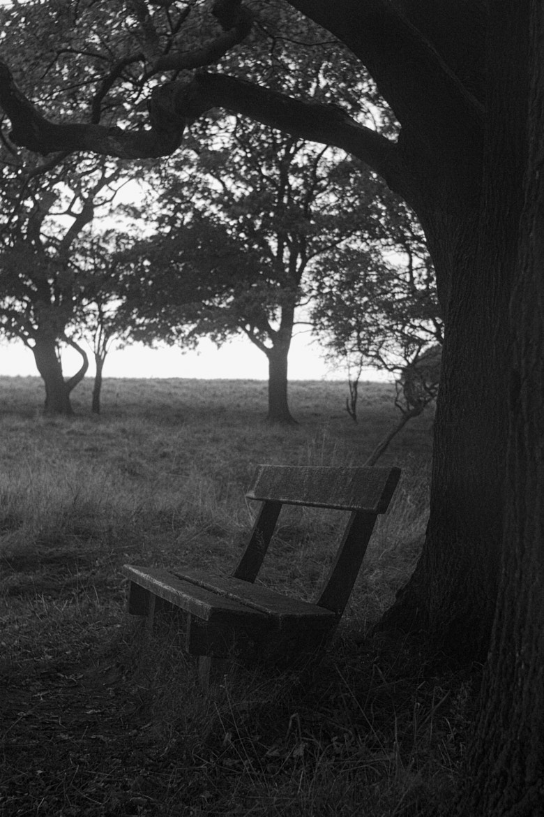 Photograph Bench by Thomas Andersen on 500px