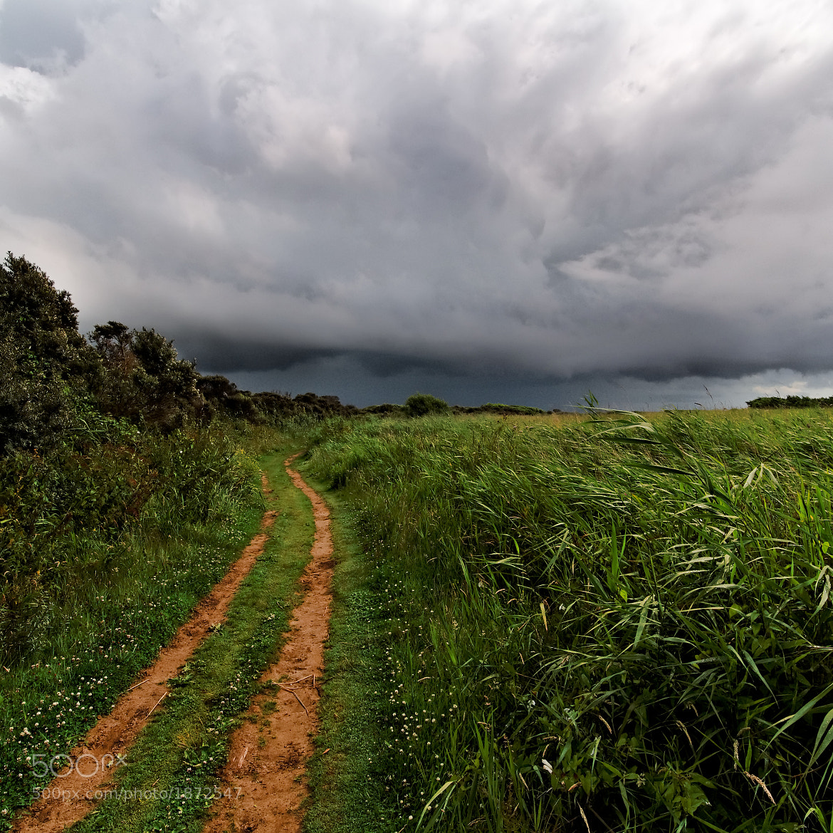 Photograph Storm and sandy lane, Berrow, Somerset by Chris Tubb on 500px