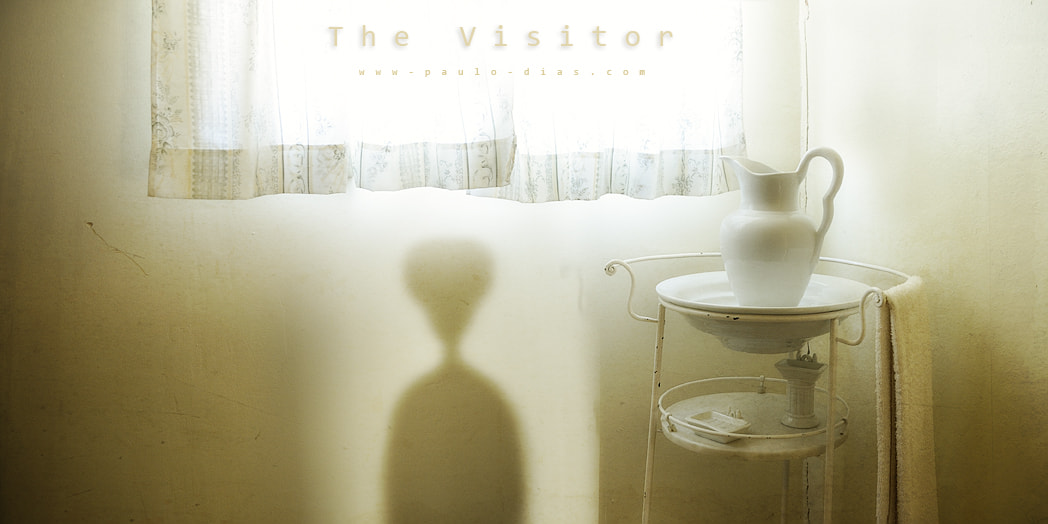 Photograph The Visitor by Paulo Dias on 500px