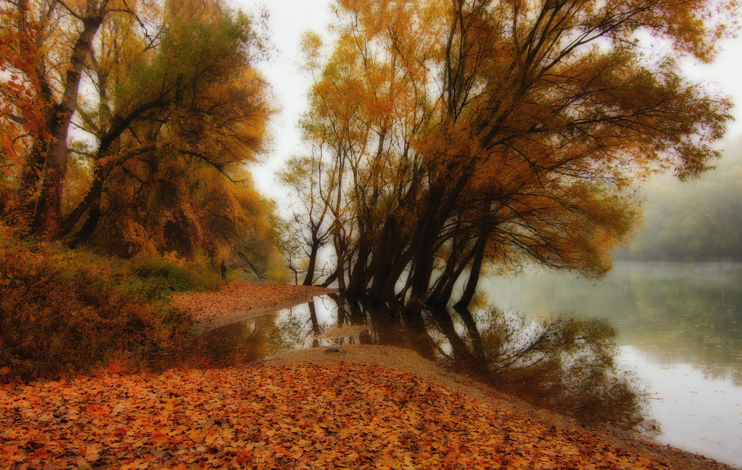 Photograph Autumn colourful by Andy 58 on 500px