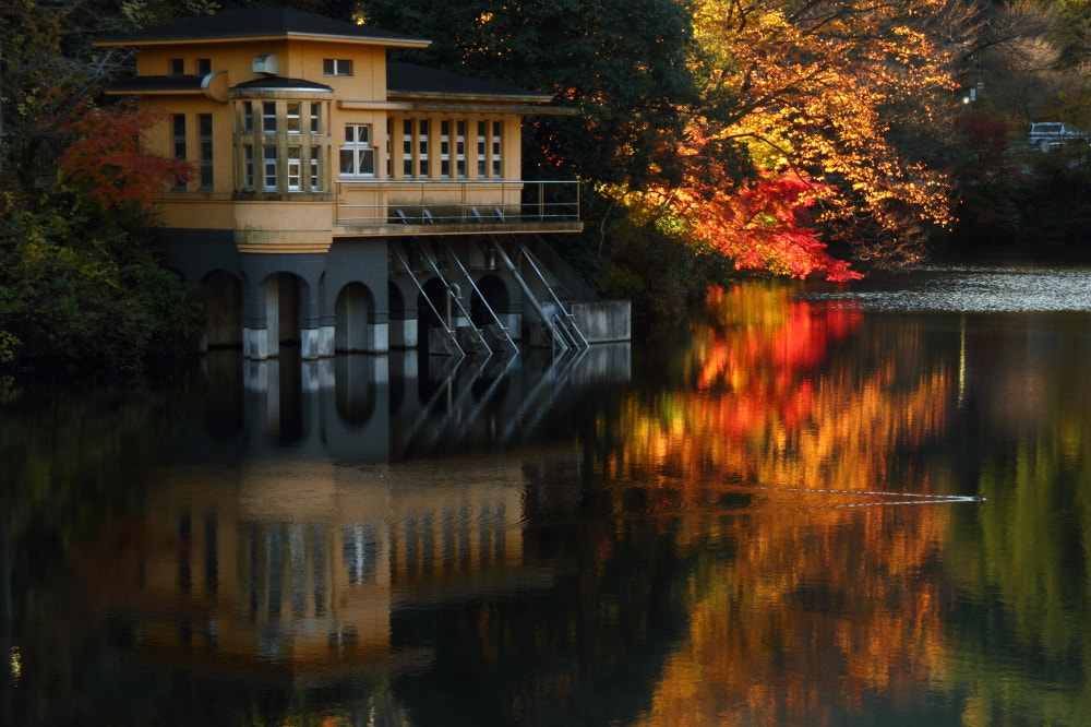 Photograph Autumn Lakeside by Sueo Takano on 500px