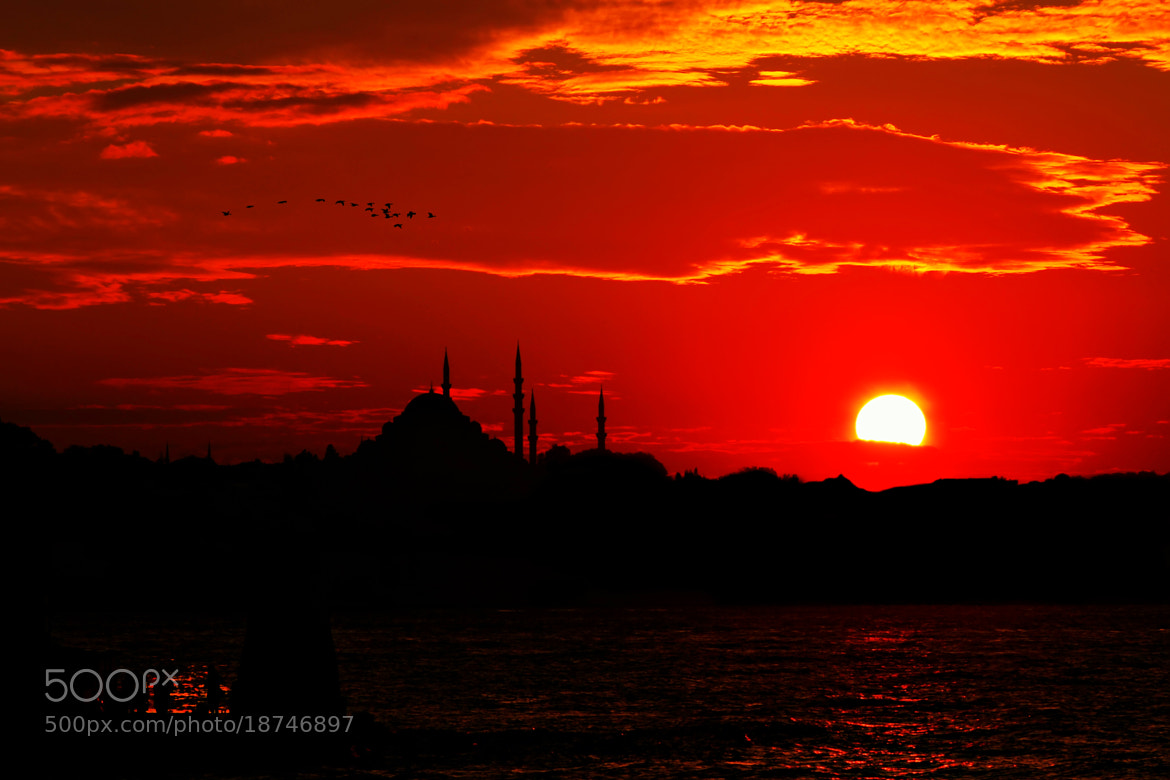 Photograph sun life by Samet Güler on 500px