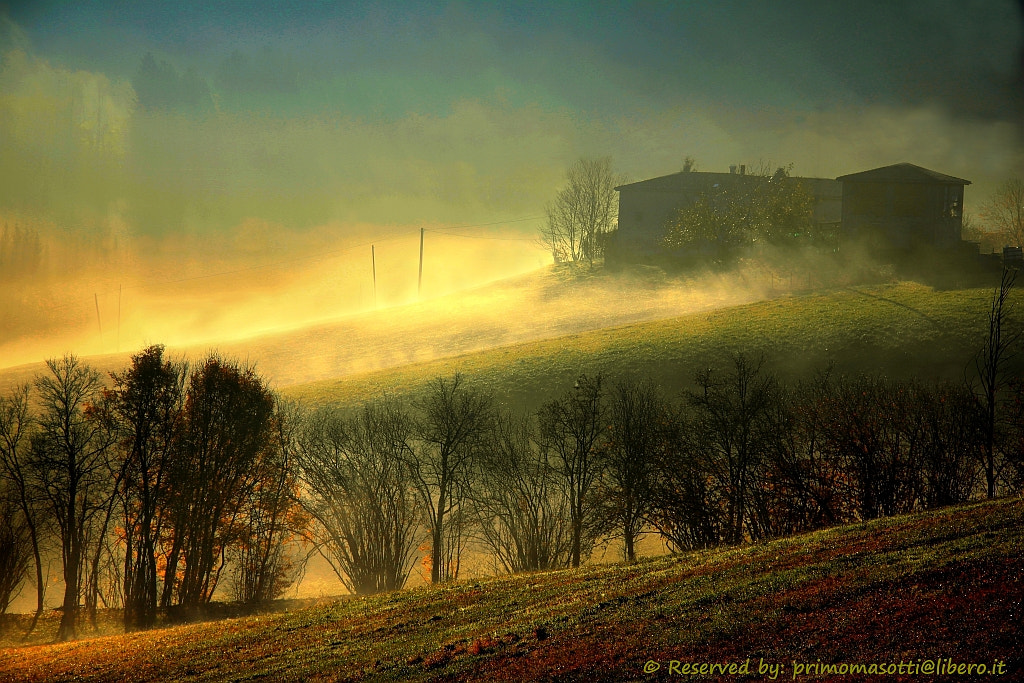 Photograph dawn of autumn _5119 _  dvd 15 by primo masotti on 500px