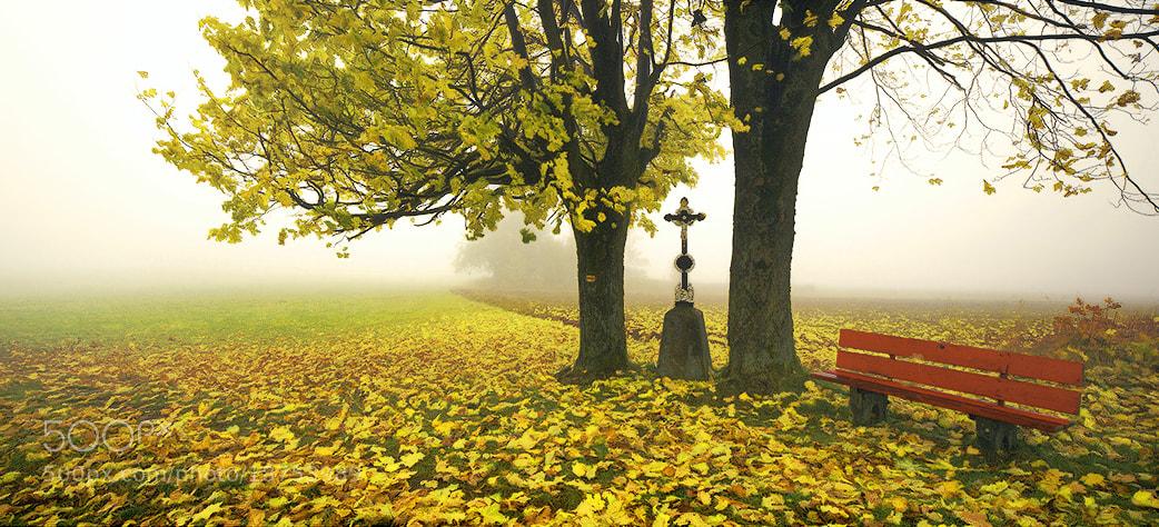 Photograph Little Autumn Scene by Kilian Schönberger on 500px