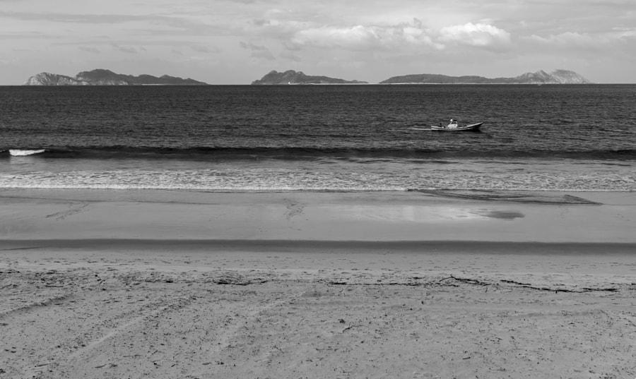 Island, fish and sea