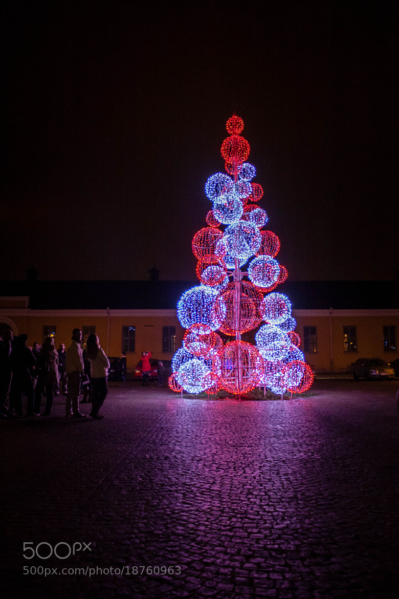 Photograph Digital Christmas by Mirza Buljusmic on 500px
