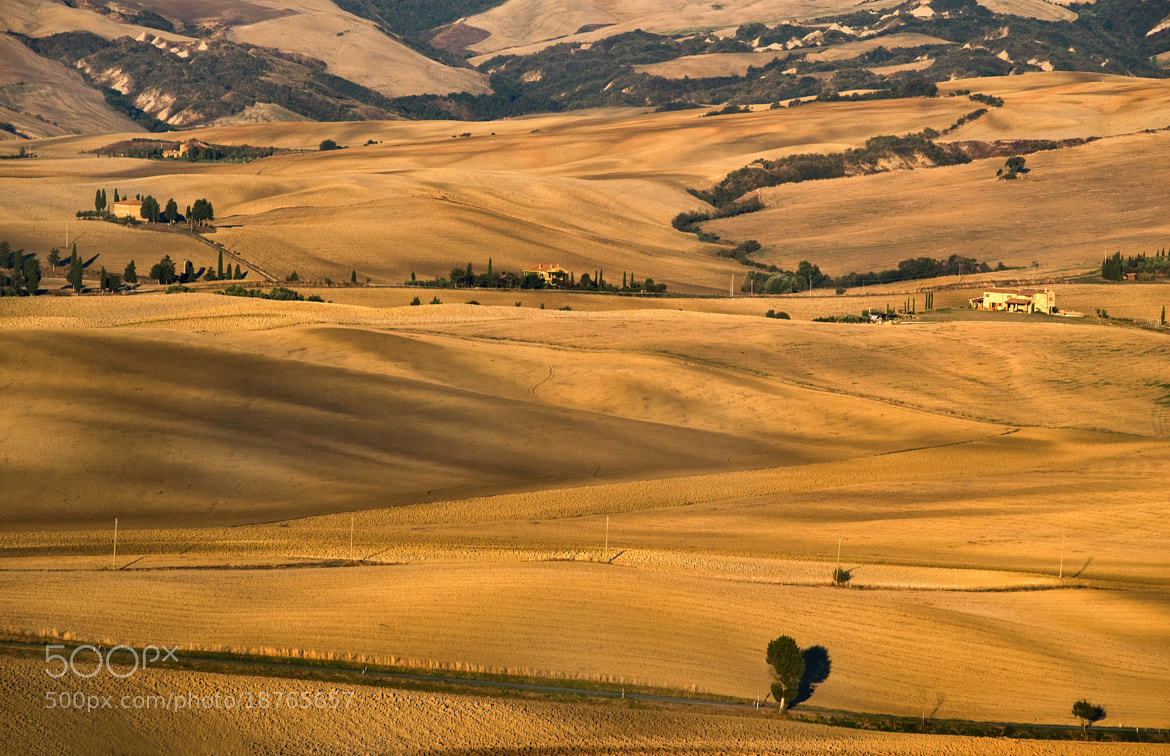 Photograph d'Orcia by Vladimir Pchelintsev on 500px