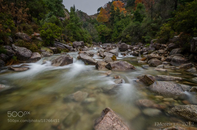 Photograph Fall #5 by Fernando Moreira on 500px