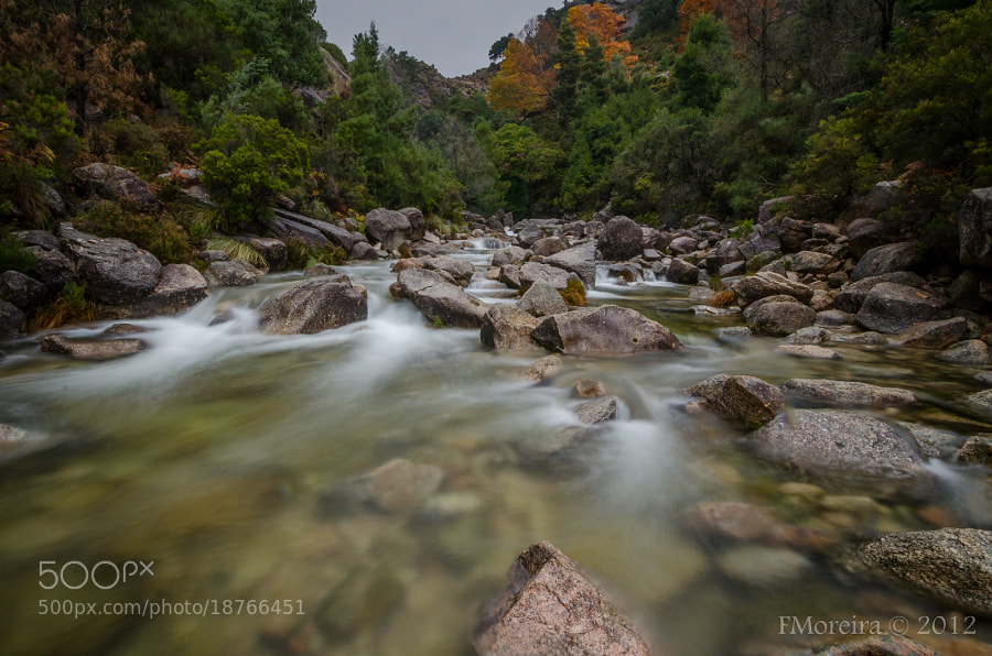Photograph Fall #5 by Fernando Moreira on 500px
