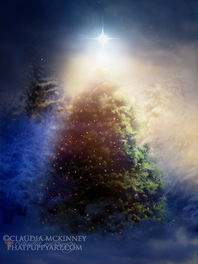 Photograph Heaven's Christmas by Phatpuppy Art on 500px