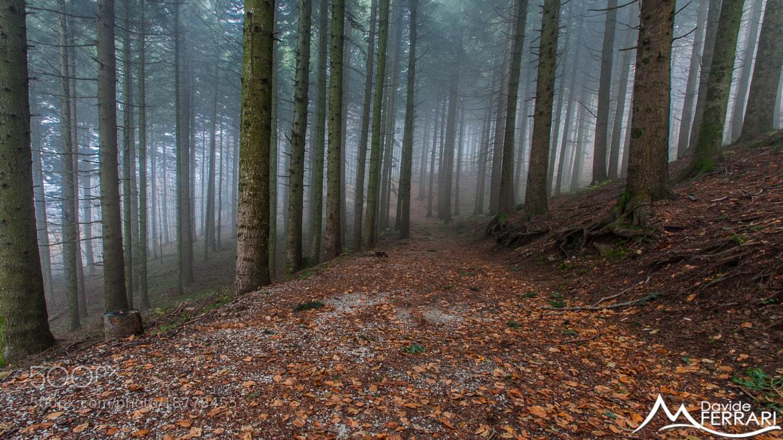 Photograph Deep Breath by Davide Ferrari on 500px