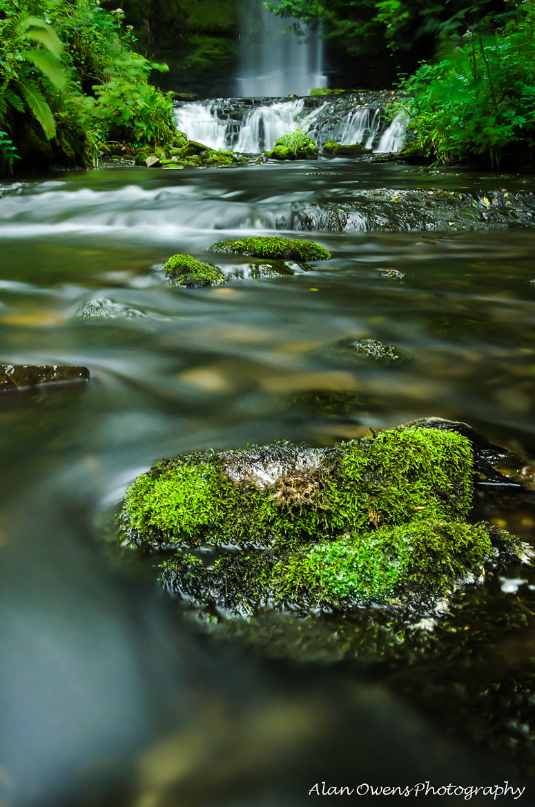 Photograph ~Away from the Cascade~ by Alan Owens on 500px
