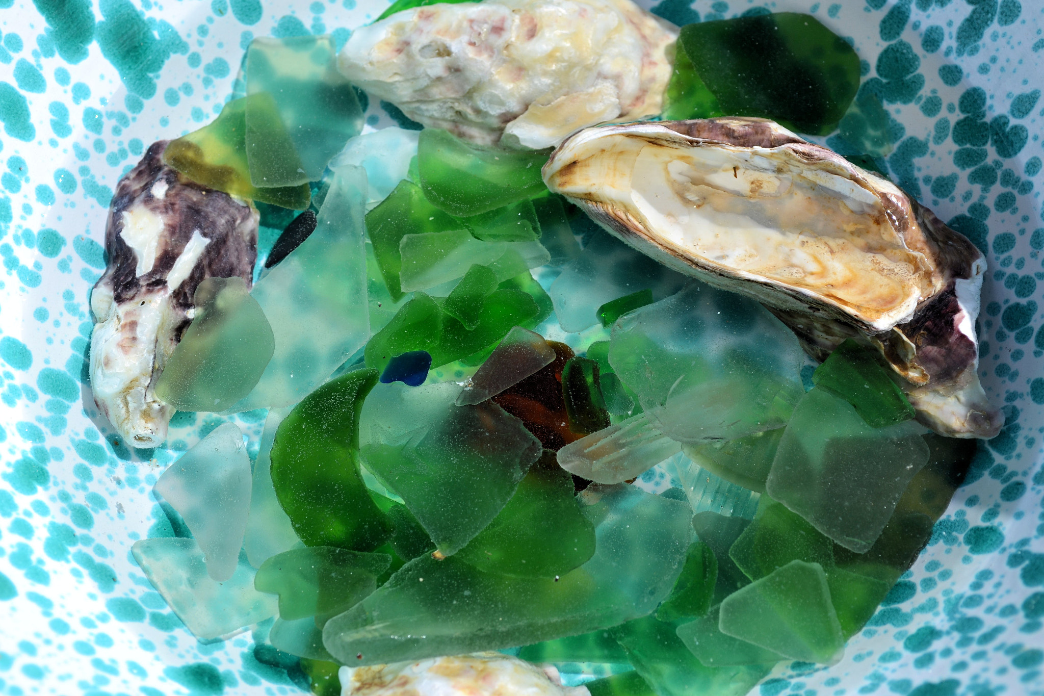 Photograph Beach treasures by Heather Aplin on 500px