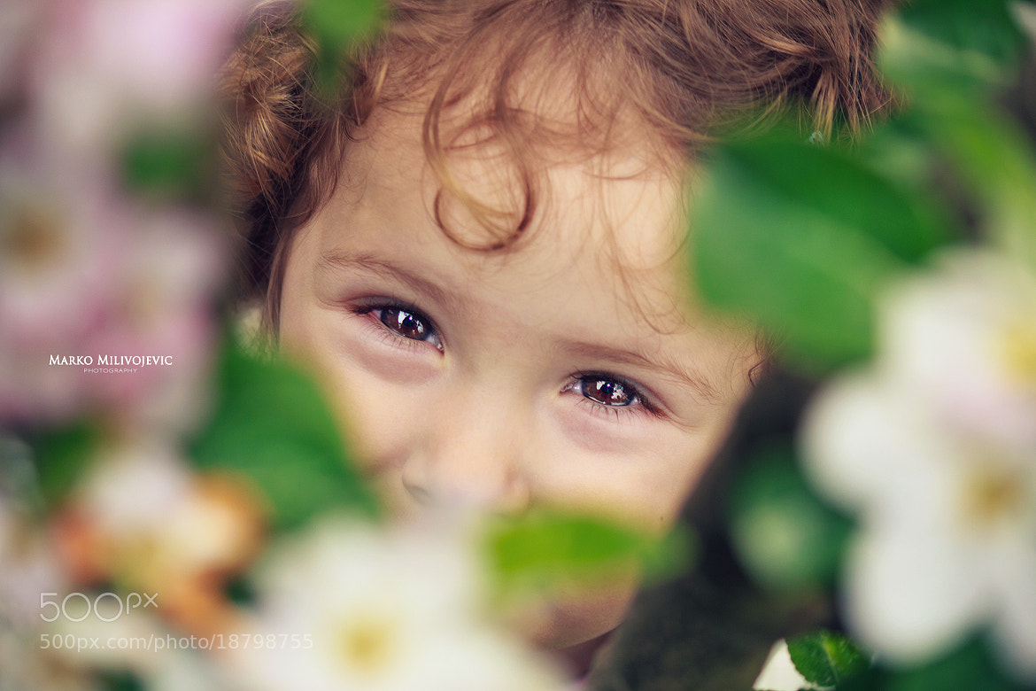 Photograph flower eyes by Marko Milivojevic on 500px