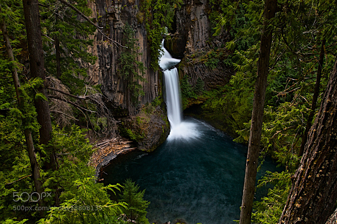 Photograph Toketee Falls by Todd Olthoff on 500px