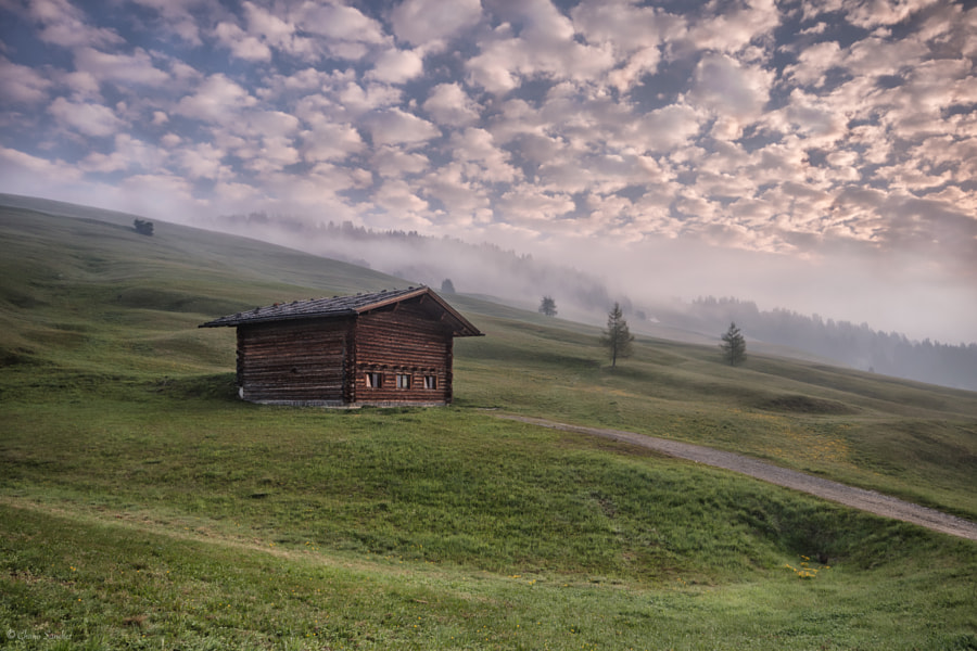 Foggy Morning || Alpe di Siusi (Dolomiti) by Landscape Photographer Chano Sanchez on 500px.com