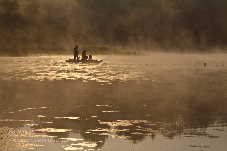 Photograph Woopo Swamp by Yeak Kkot Ahn on 500px