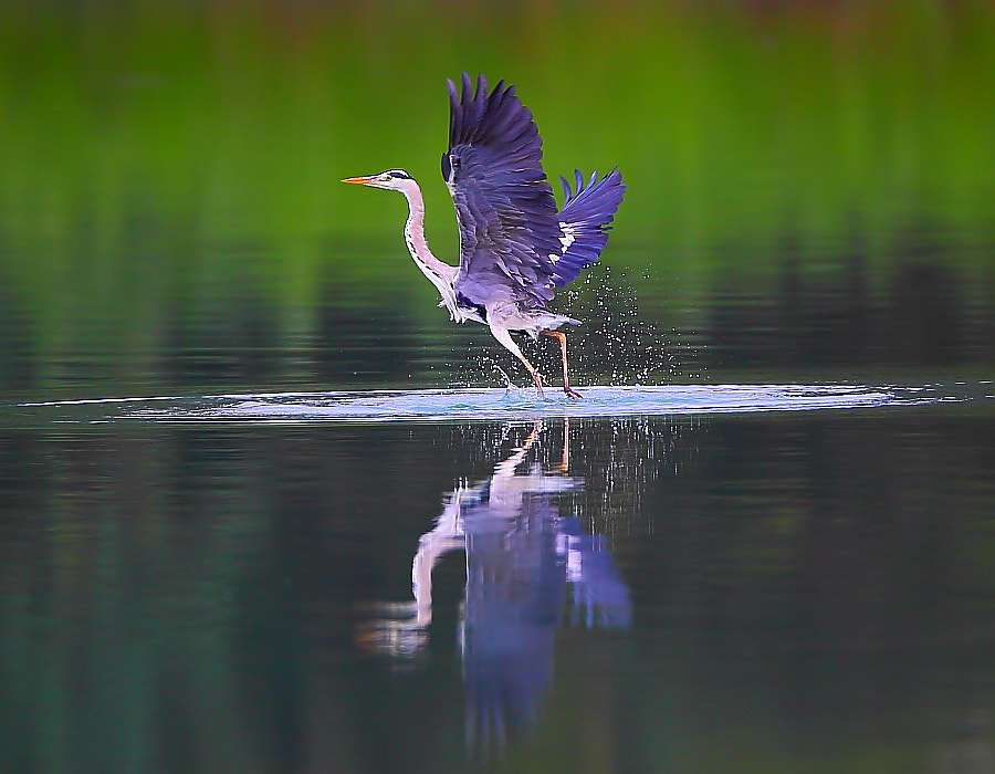 Photograph take off by Dajan Chiou on 500px