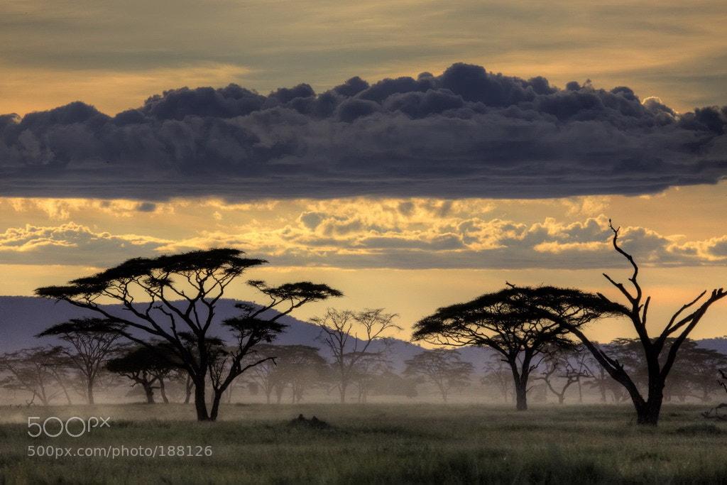 Photograph Good evening Tanzania by Amnon Eichelberg on 500px