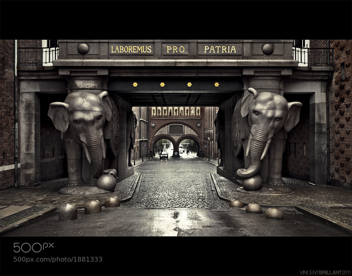 Photograph LABOREMUS PRO PATRIA by Vincent  Brillant on 500px