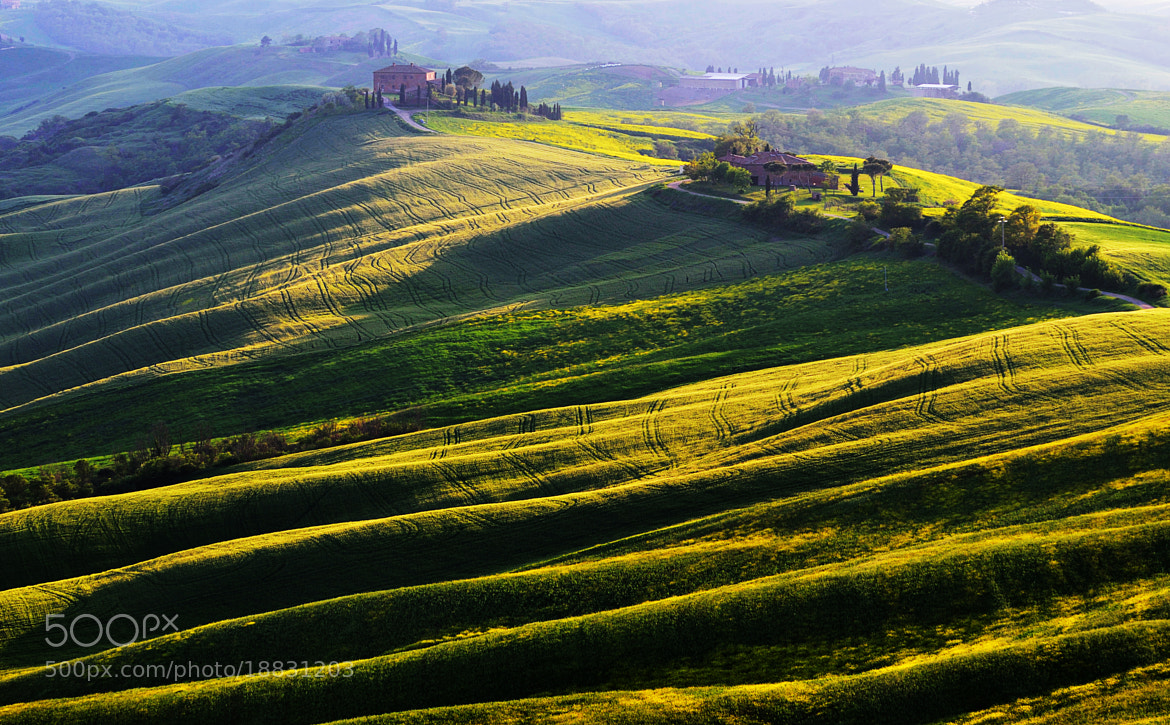 Photograph Long Shadows by Csilla Zelko on 500px