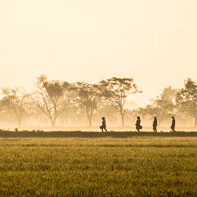 Silhouette of Farmers