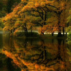 Grasmere by Wolfy . (Wolfy)) on 500px.com