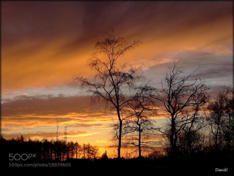 Photograph When the night falls...   ..   . by Daniël Van Hoecke on 500px