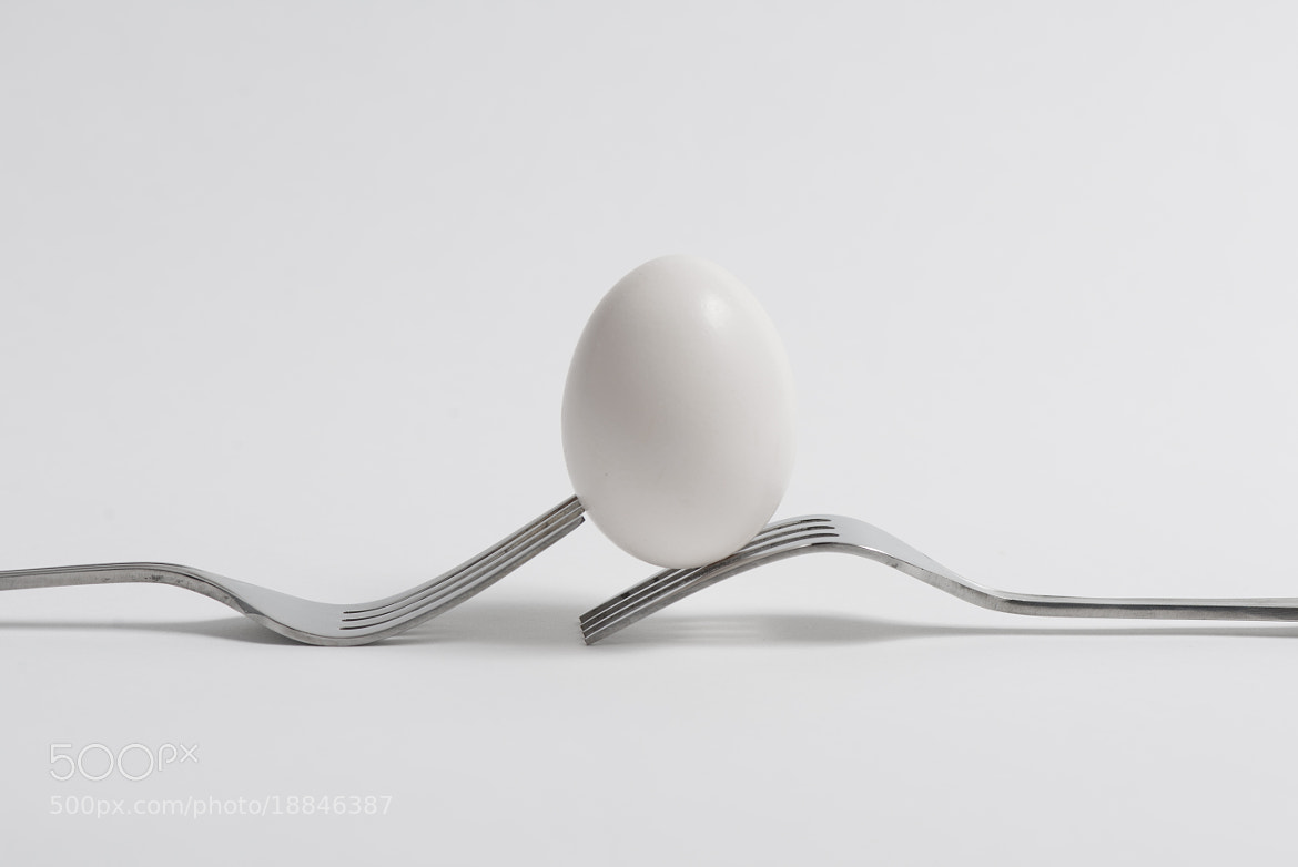 Photograph Forks and egg : the alternative by Martin Cauchon on 500px