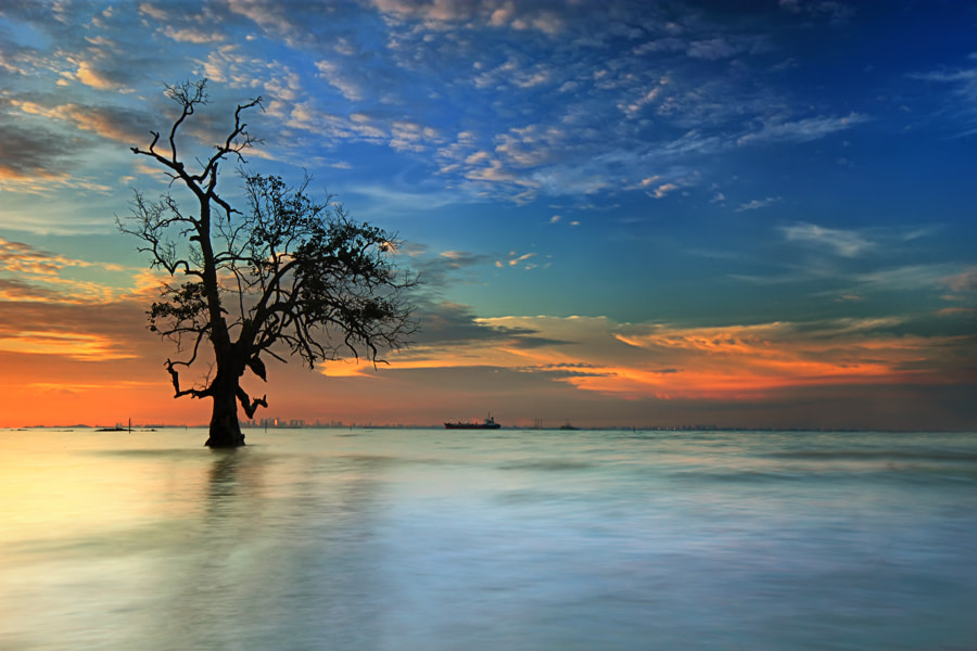 Photograph sebatang kara by Danis Suma Wijaya on 500px