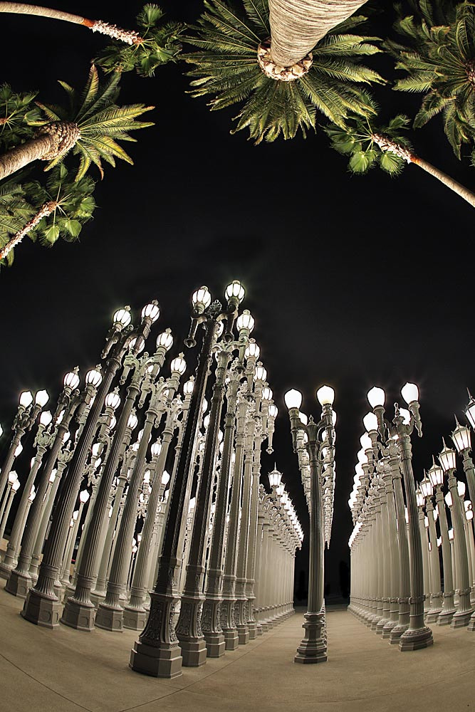 Photograph Lampposts and Palms by Bob Jensen on 500px