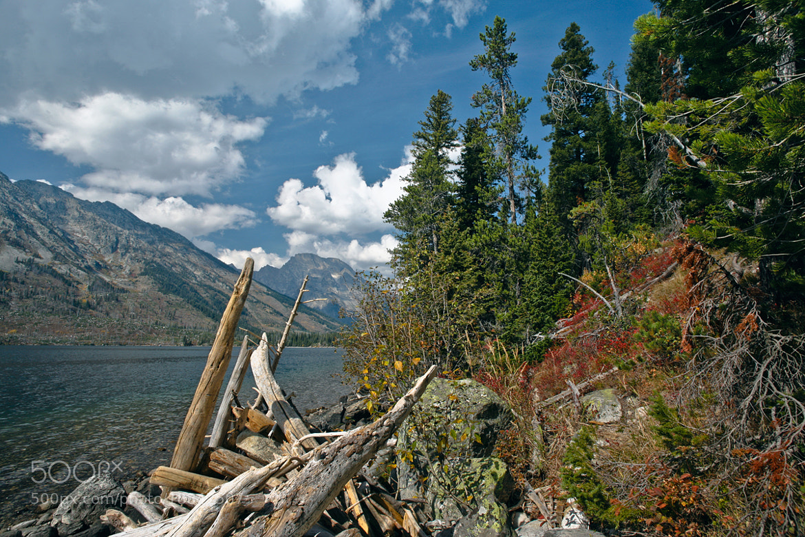 Photograph Jenny Lake - Wyoming by Jack Booth on 500px