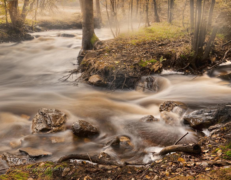 Photograph folow that flow by Patrick Strik on 500px