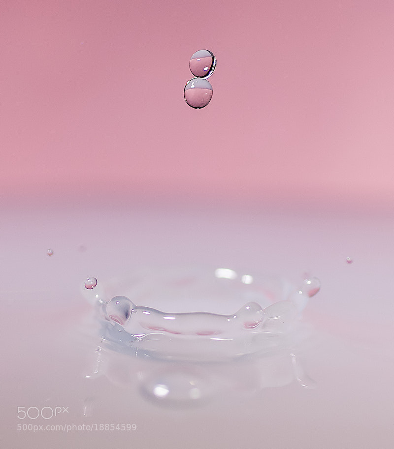 Photograph Pink by Christiaan Slot on 500px