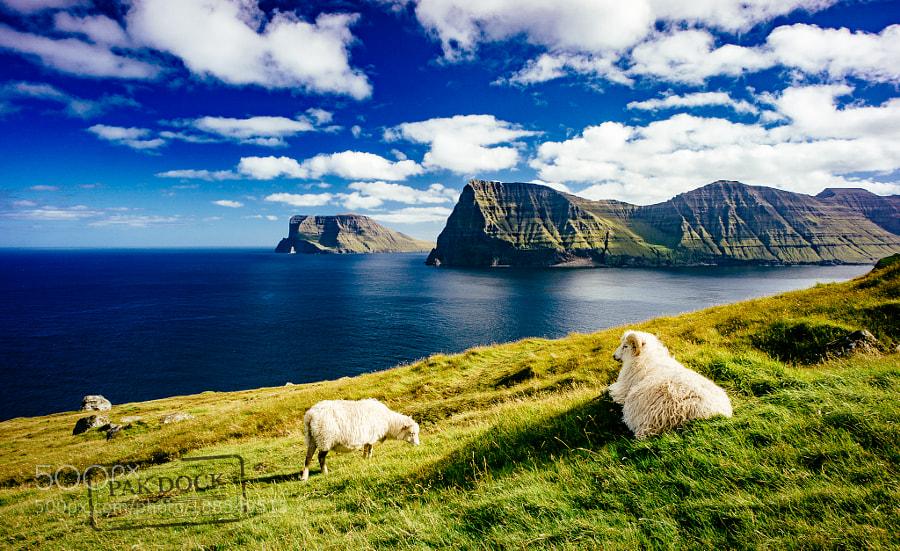 Føroyar - Faroe Islands