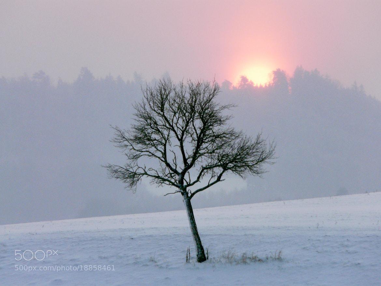 Photograph Sunrise by Michael Lüdtke on 500px
