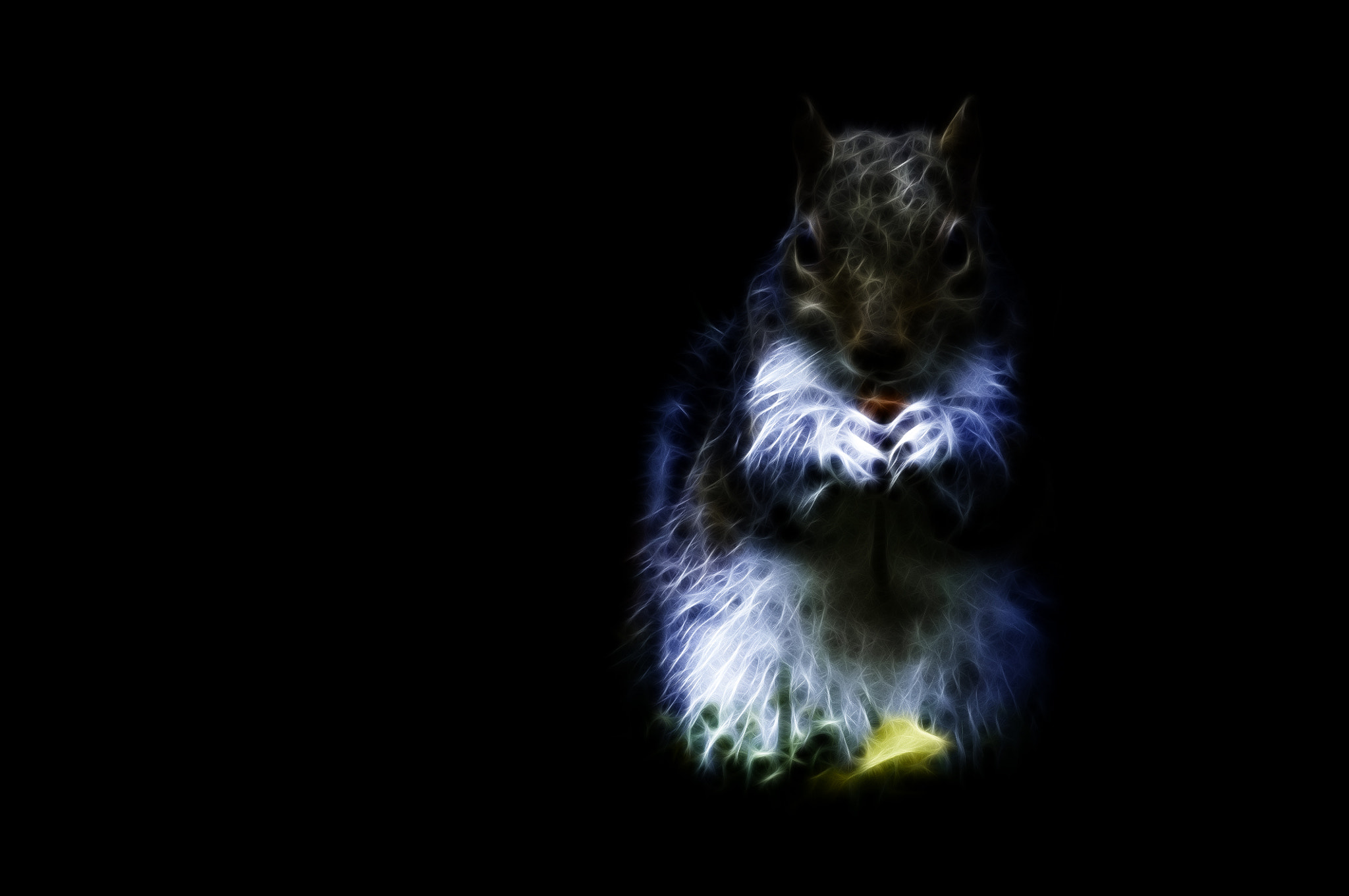 Photograph Tufty the Squirrel by Tony Haddow on 500px
