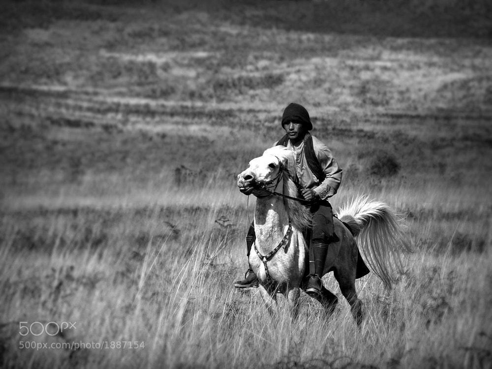 Photograph galloping in Bromo mt. by Irawan Subingar on 500px