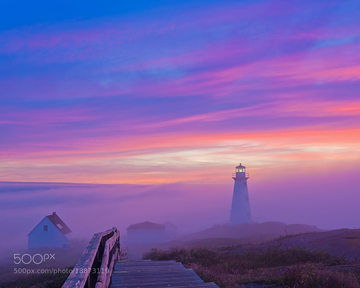 Photograph Cape Spear Lighthouse by Geoffrey Whiteway on 500px