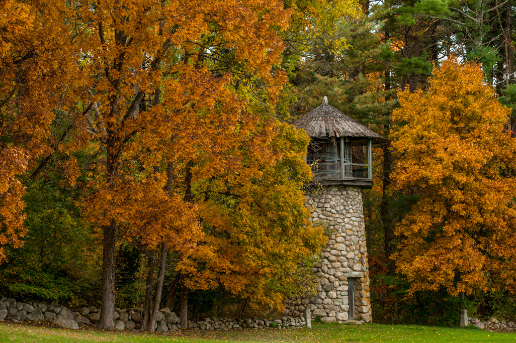 Photograph The Water Tower by Lyn Scott on 500px