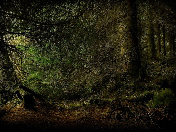 Photograph loch ard forest by stuart kerr on 500px